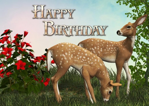Animal Birthday Card Picture - Start with a simple colored background.