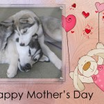 Free Mother's Day Cards 2 – Photo Cards