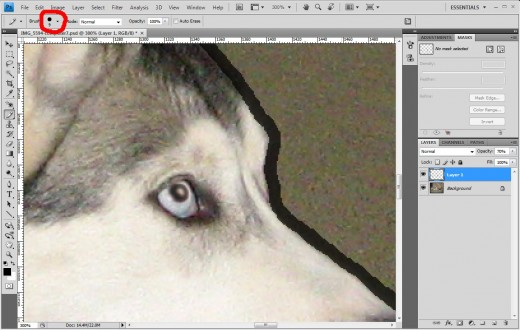 Step 6 - To effectively trace the edge, we may want to zoom in and then carefully draw around our foreground elements.