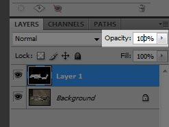 Step 10 - Reset the opacity of our mask layer (Layer 1) to 100%.