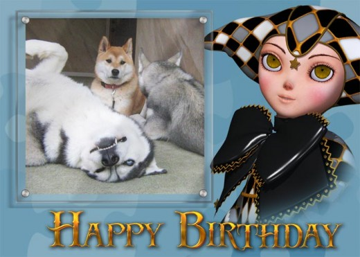 Photo greeting card with birthday clown and photo of dogs.