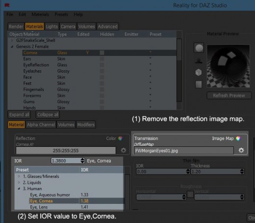 Screen-shot of what image map to remove in the human cornea surface, and how to set the surface IOR value.