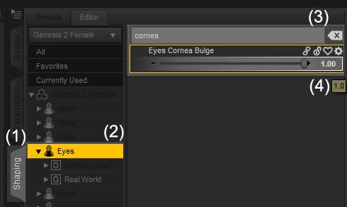 Screenshot of how to access and change the Cornea Bulge parameter for our human figure.